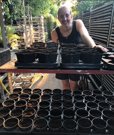 jack-s-beans-planted.jpg